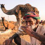 les vertus du lait de chamelle - blog 1001 vertus